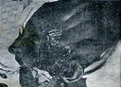 Imagen 1 del texto de San Martín