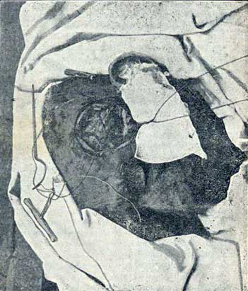 Imagen 3 del texto de San Martín